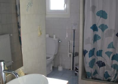 bathroom with sink, toilet and shower with blue gingko leaves curtain